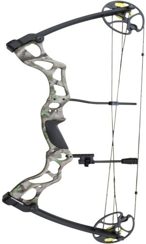 Best Compound Bows for Money