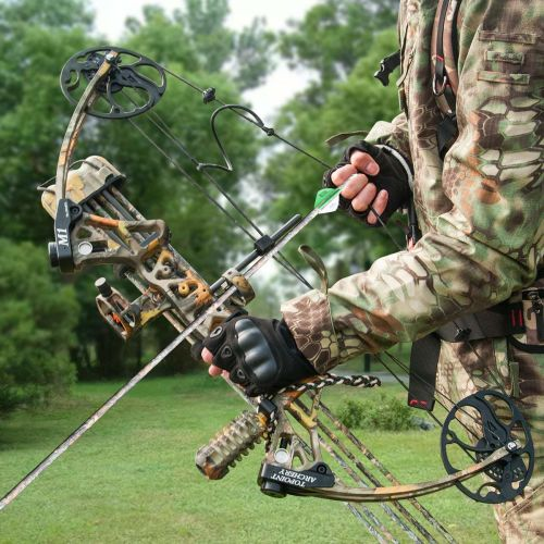 Bow With an Adjustable Draw Weight