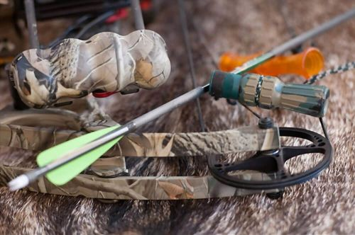 Best budget compound bows