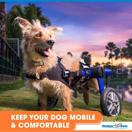 wheelchair for medium dogs