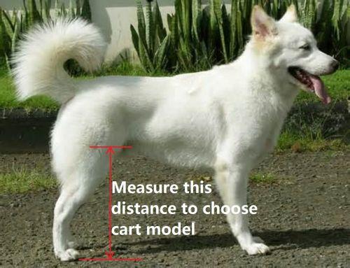 Huggiecart Dog Wheelchair for Small Dog
