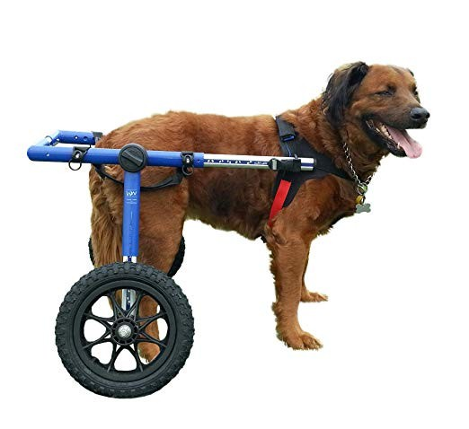 Wheelchair for Large Dogs