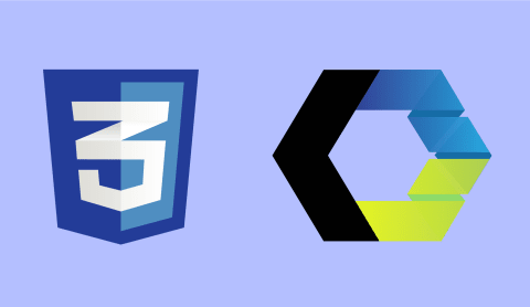 Using CSS files in web components