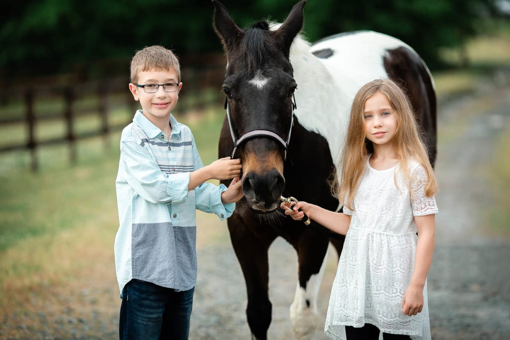 family Photo Session With a Horse at Euro Equine Stables, Apex, NC