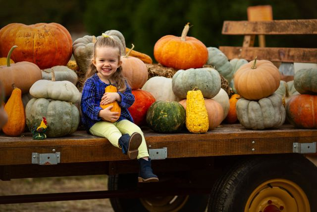fall kids photo session