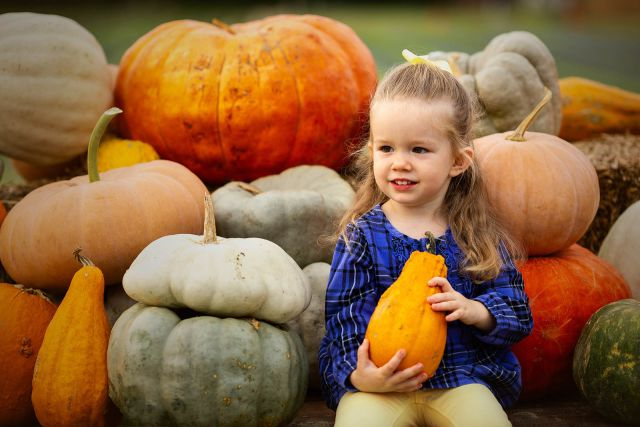 pumpkin patch kids photo session