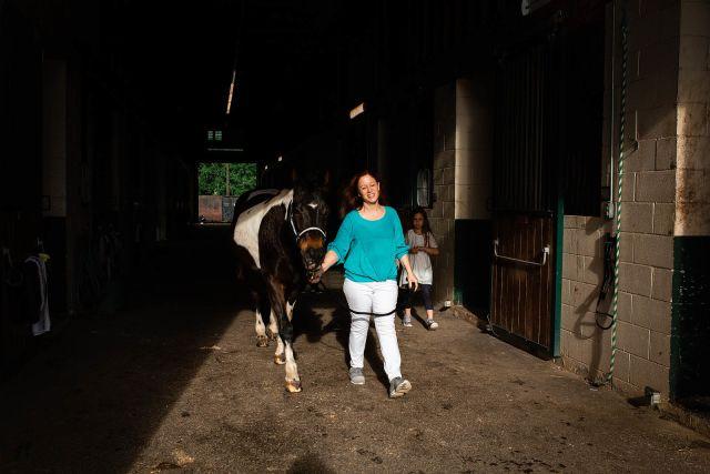 apex horse Photography