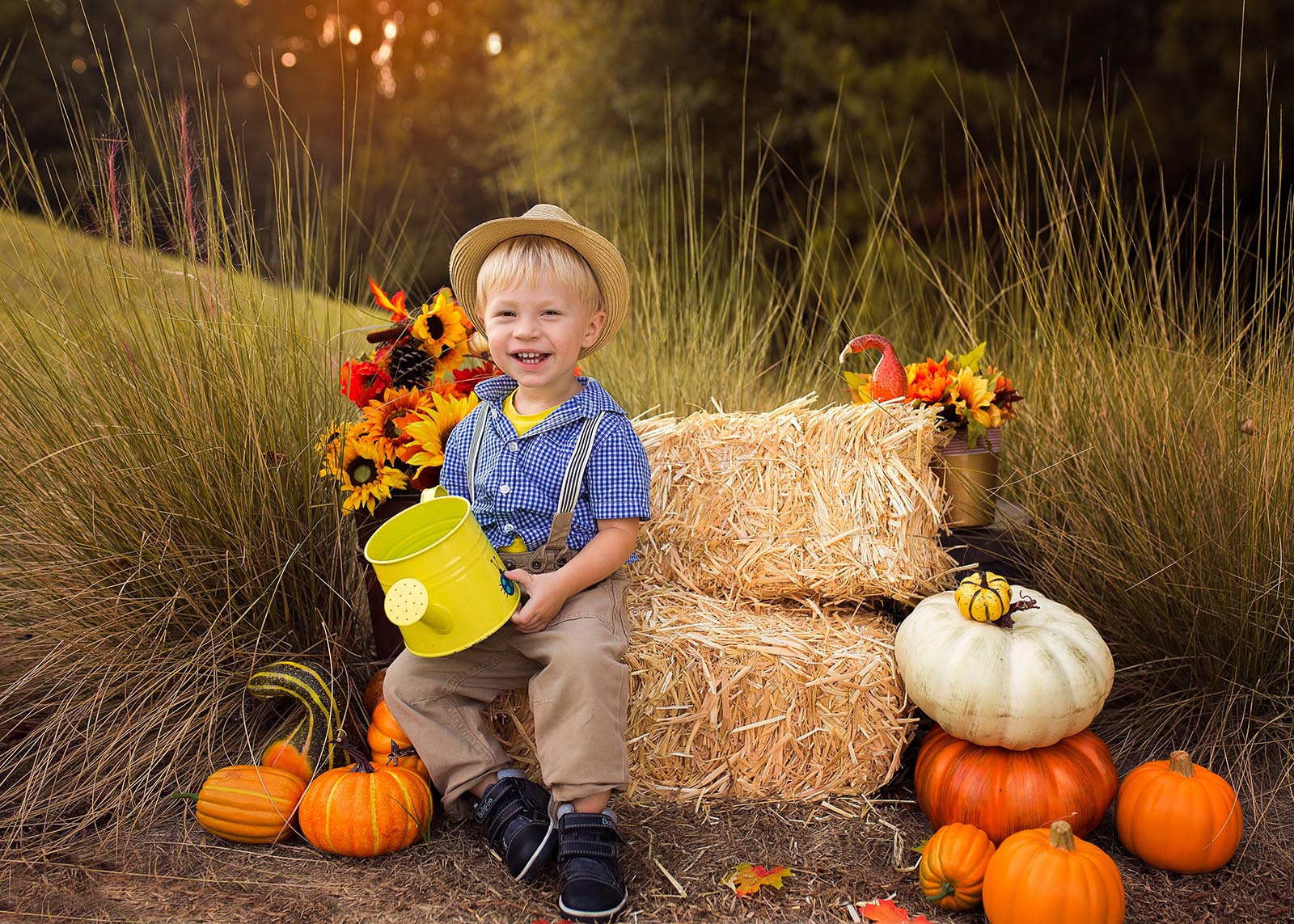 fall mini sessions session professional farm nc park raleigh photographer parks cary take place favorite they locations
