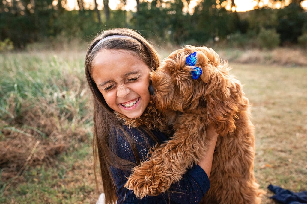 photo session with puppy holly spring family photographer