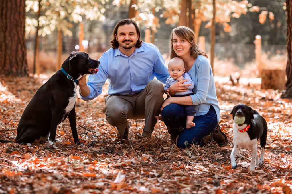 outdoor family portrait session with 2 dogs