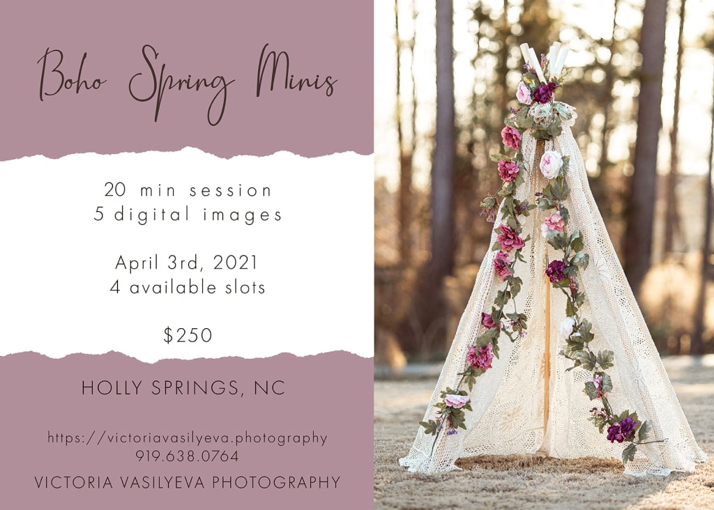 boho spring minis best maternity photo session in raleigh nc
