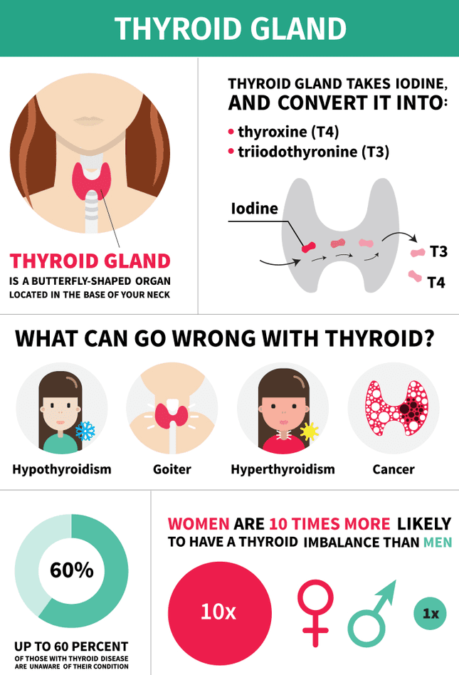 Take Medications for Hypothyroidism or Thyroid Regularly