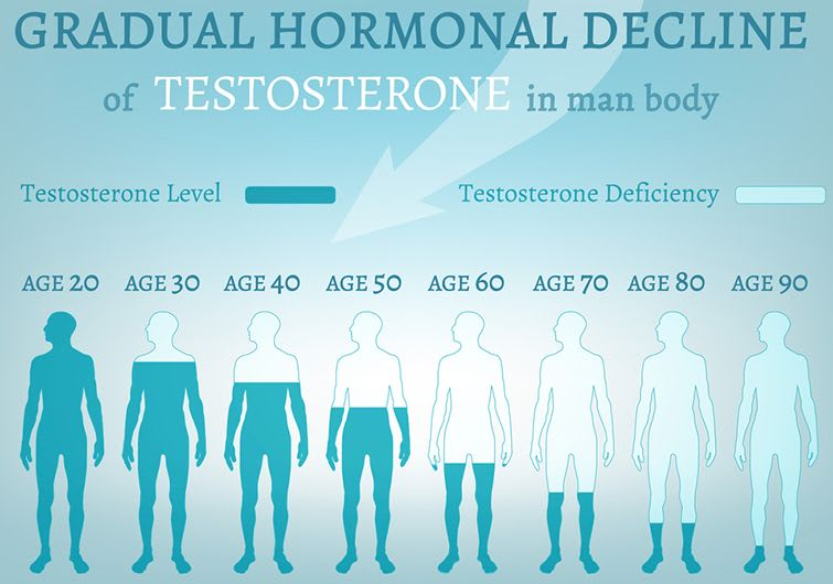 Gradual Hormonal Decline of Testosterone in man's body.