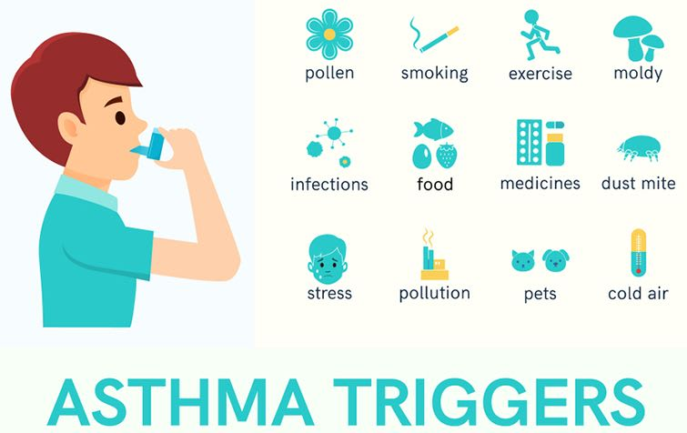 What Are The Foremost Common Triggers For An Asthmatic Attack