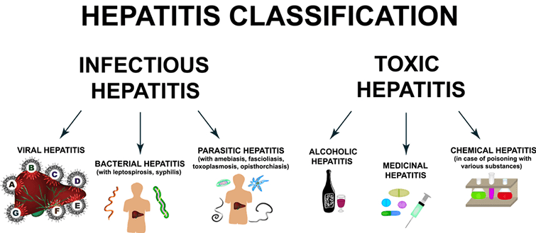 Hepatitis Classification