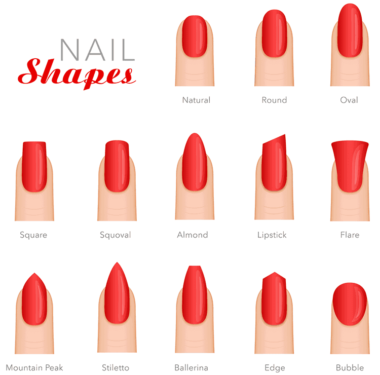 Know your nail shapes