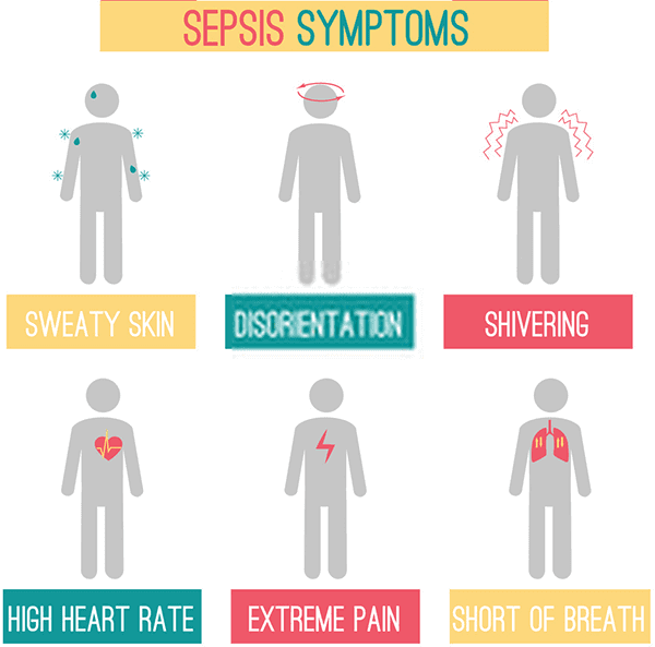 What Are The Symptoms Of Septicemia