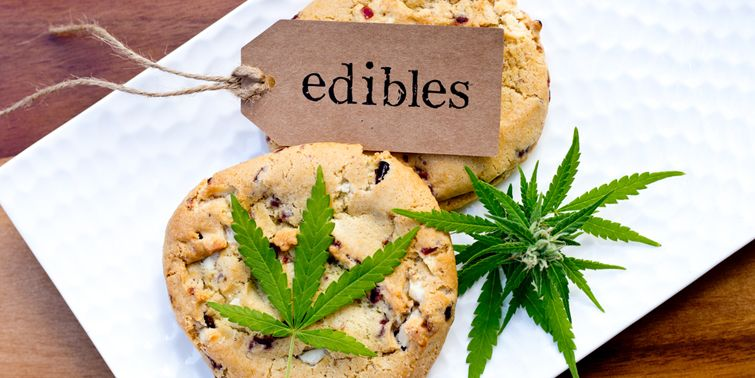There are a few people who smoke marijuana by blending it with cigarettes. While marijuana it can likewise be devoured in an edible structure like pot-brownies, treats, cookies or sticky bears.