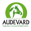 logo d'audevard