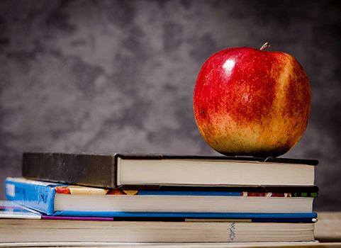 livres pomme éducation connaissance savoir