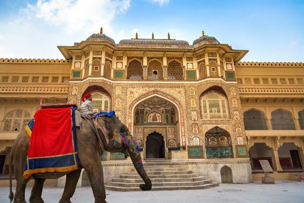 From Jaipur: Half Day Tour of Amer and Nahargarh fort