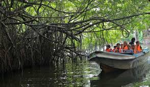 Madu River Boat Safari From Colombo