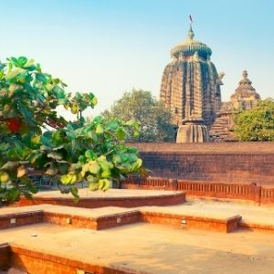 Bhubaneswar tours or trips or adventure