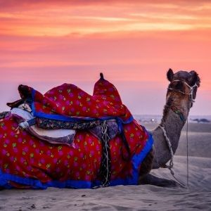 Jaisalmer tours or trips or adventure