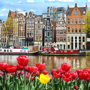Amsterdam tours or trips or adventure