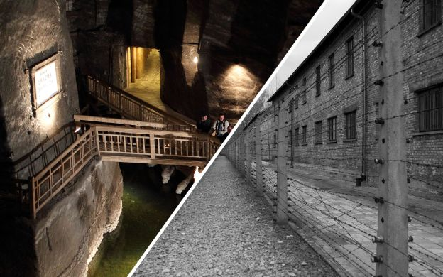 Auschwitz and Wieliczka Salt Mine: Skip-the-Line, Group Tour and Transfers from Krakow