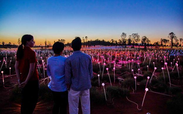 Lights On: Sunrise at Uluru and Bruce Munro's Field of Light + Morning Tea / Coffee / Hot Chocolate