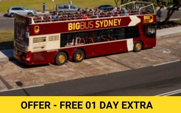 Big Bus Sydney: Hop-On, Hop-Off Bus + Entry to 4 Merlin Attractions