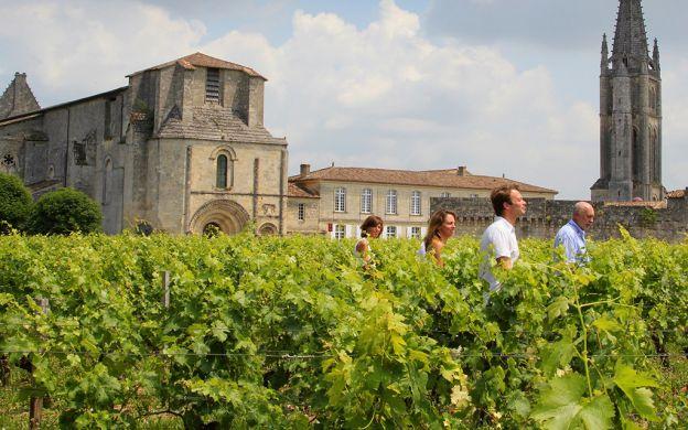 Afternoon Wine Tour Saint-Emilion