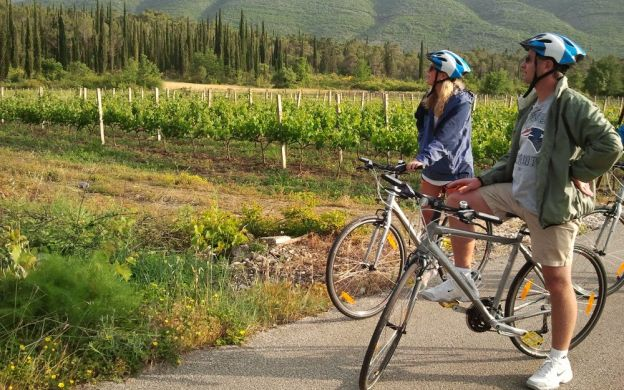 Biking Tour of the Konavle Vineyards