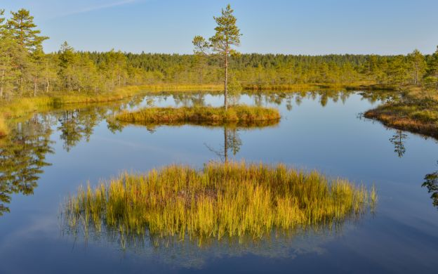 Estonia Lahemaa National Park Tour