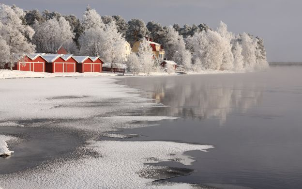 Reindeer Farm Visit and Sleigh Ride in Lapland