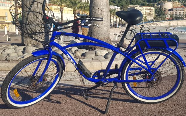 Have a 'Nice' Day: City Highlights Tour on an E-bike