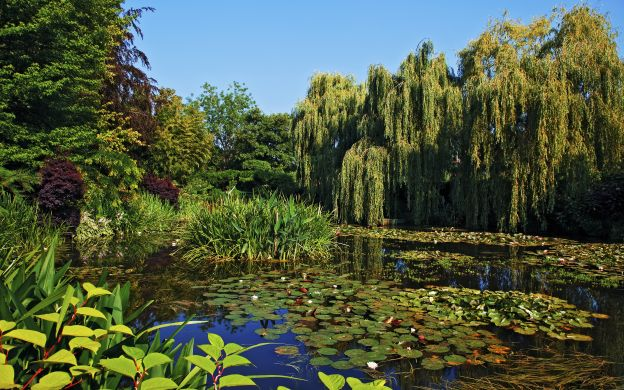 Giverny Tour from Paris: Monet House, Audio Guide