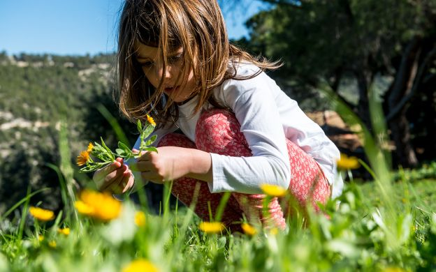 The Enchanted Forest Walking Tour For Children At Mt Imittos