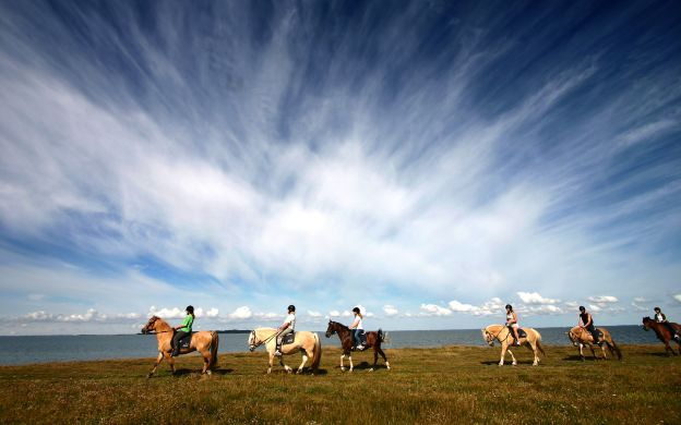 Viking Horse Riding & Golden Circle Express Tour