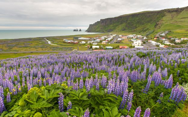 Iceland's South Shore with Black Sand Beach