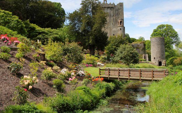Shamrocker Adventure from Dublin: 3 days with stay, Killarney, Cliffs of Moher, Ennis