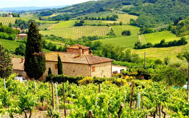 Chianti Sightseeing Tour with Wine Tasting