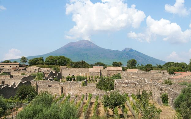 Private Pompeii Tour - From Naples