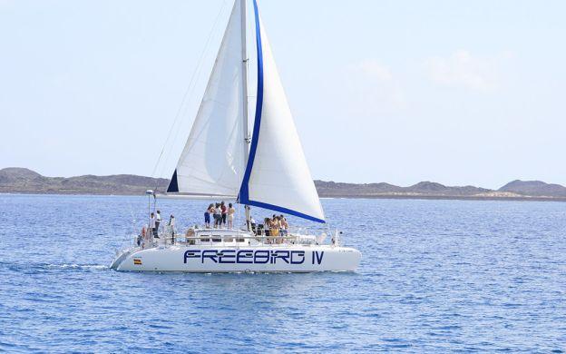 Freebird Catamaran Cruise to Isla de Lobos