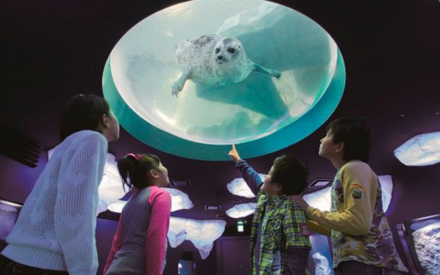 Osaka Bay Area Tour: Kaiyukan Aquarium, Tempozan Market and Cruise