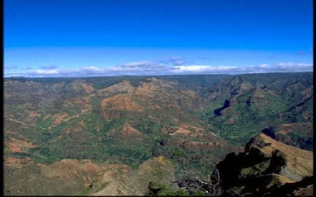 Waimea Canyon Family Excursion