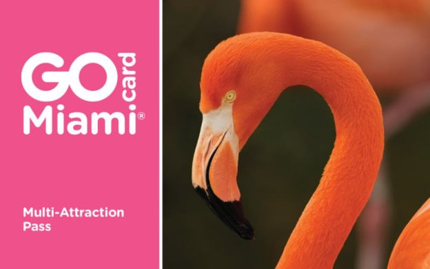 Go Miami Card - All-Inclusive: Skip-the-Line Access to Top Attractions, Hop-On, Hop-Off Tour and More
