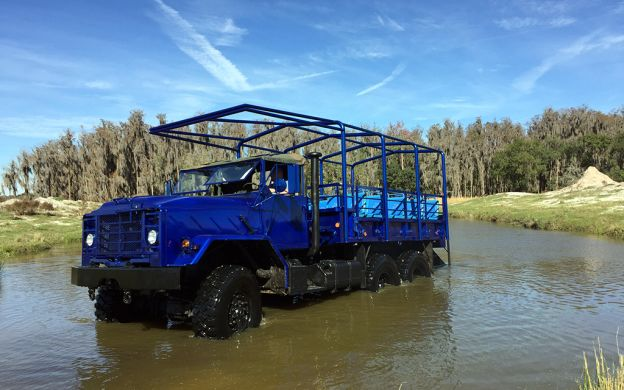 Wild Florida Tour with Airboat Ride, Lunch & Return Transfers