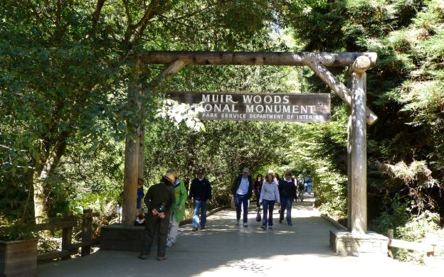 Muir Woods & Sausalito – Ecotour from San Francisco